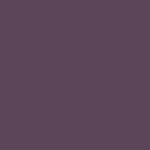 Medium Intense Violet Blonde